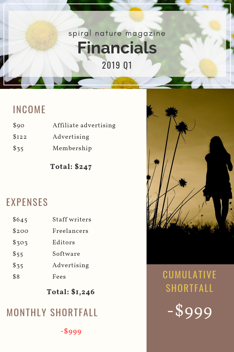 2019 Q1 Financials for Spiral Nature Magazine