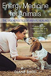 Energy Medicine for Animals, by Diane Budd