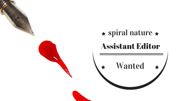 Assistant editor wanted