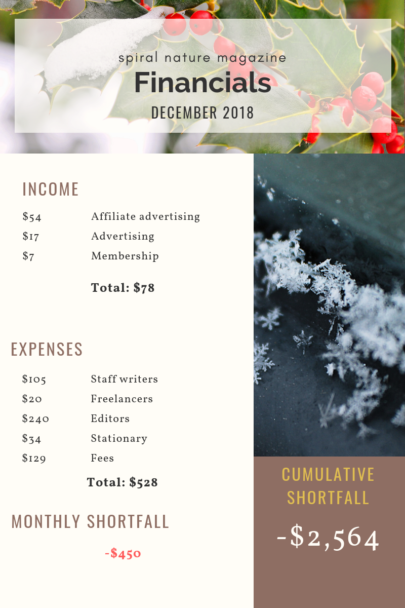 December 2018 Spiral Nature Financials
