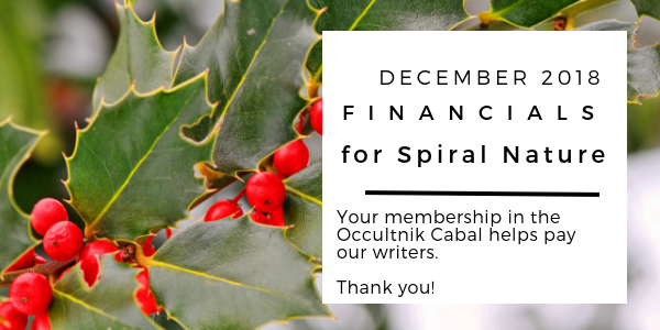Financials for Spiral Nature December 2018