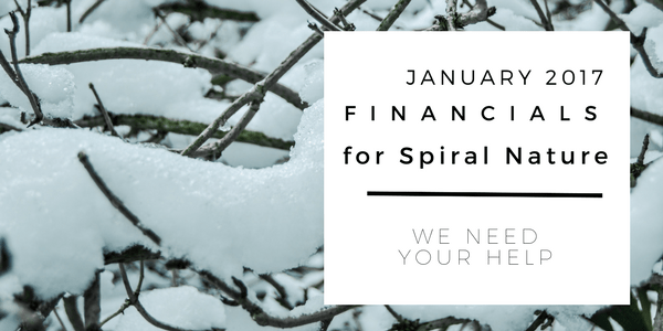 Financials for Spiral Nature January 2018