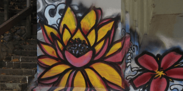 Lotus graffiti, photo by seethruu55
