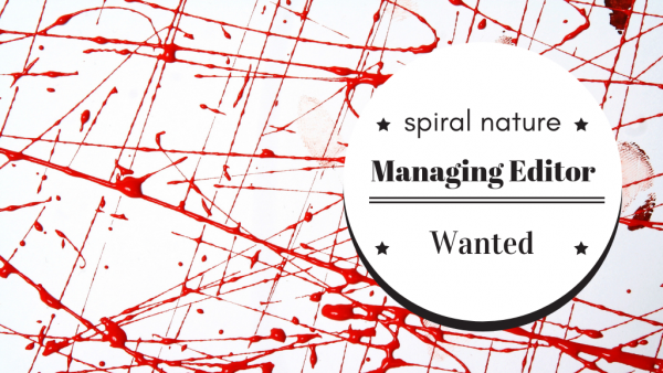 Managing editor wanted