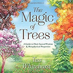 The Magic of Trees by Tess Whitehurst